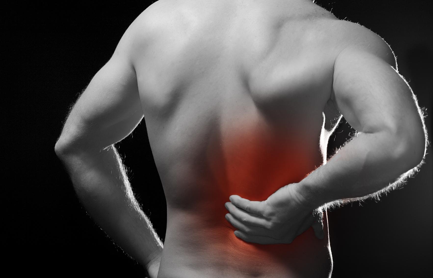 Las hierbas de los dolores en la espalda y los riñones